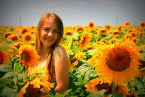 sunflower-834994_1920